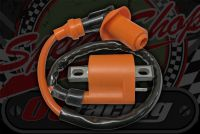 Coil. 12V. D/C & A/C. High peformance output. Orange body and silicon lead