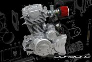 Engine. 300cc. ACE. Over Head Cam (OHC)