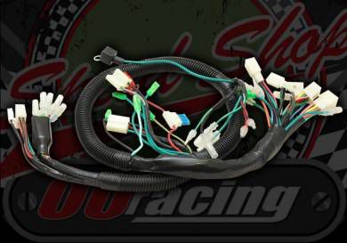Loom Wiring OORacing high grade universal with many functions pre wired in.