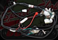 Loom Wiring. Suitable for use with ACE 50cc 125cc 2 models Pre 2014 & Post 2014