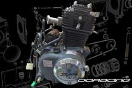 Engine 50cc OHC ACE OE replacement engine