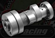 Camshaft. Standard. Primary Clutch engines