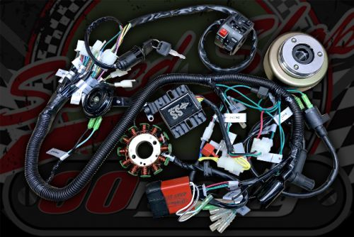 Loom kit. Monkey & Pit bike running Z190 engine with 3 phase gen and ignition corrector.