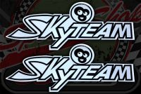 Tank badge. Sticker. Skyteam Monkey Black/silver.